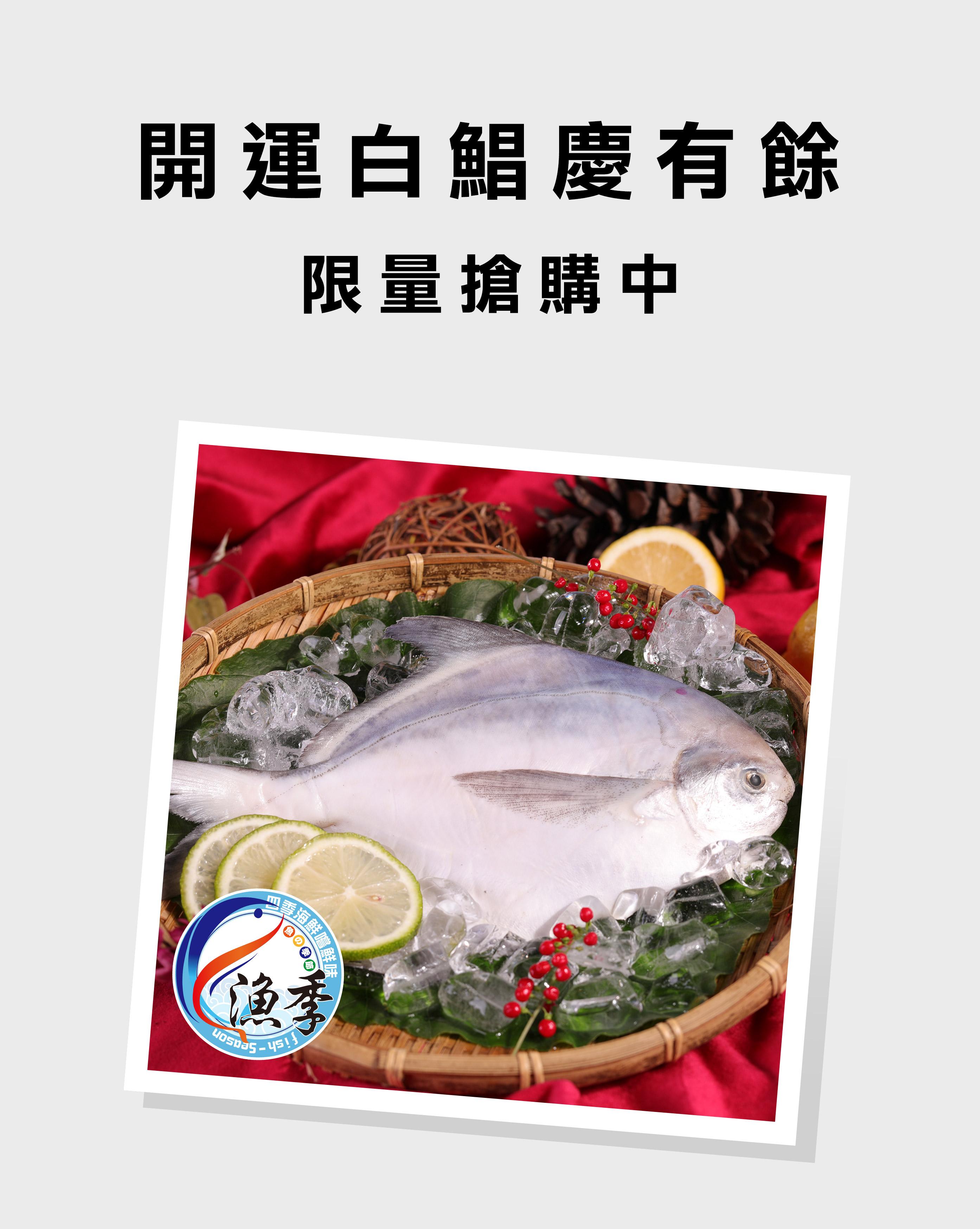 食品-漁季