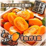 美濃橙蜜香小蕃茄