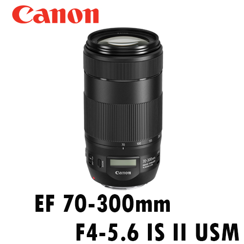 [送UV保護鏡] CANON EF 70-300mm F4-5.6 IS II USM 小小黑 彩虹公司貨